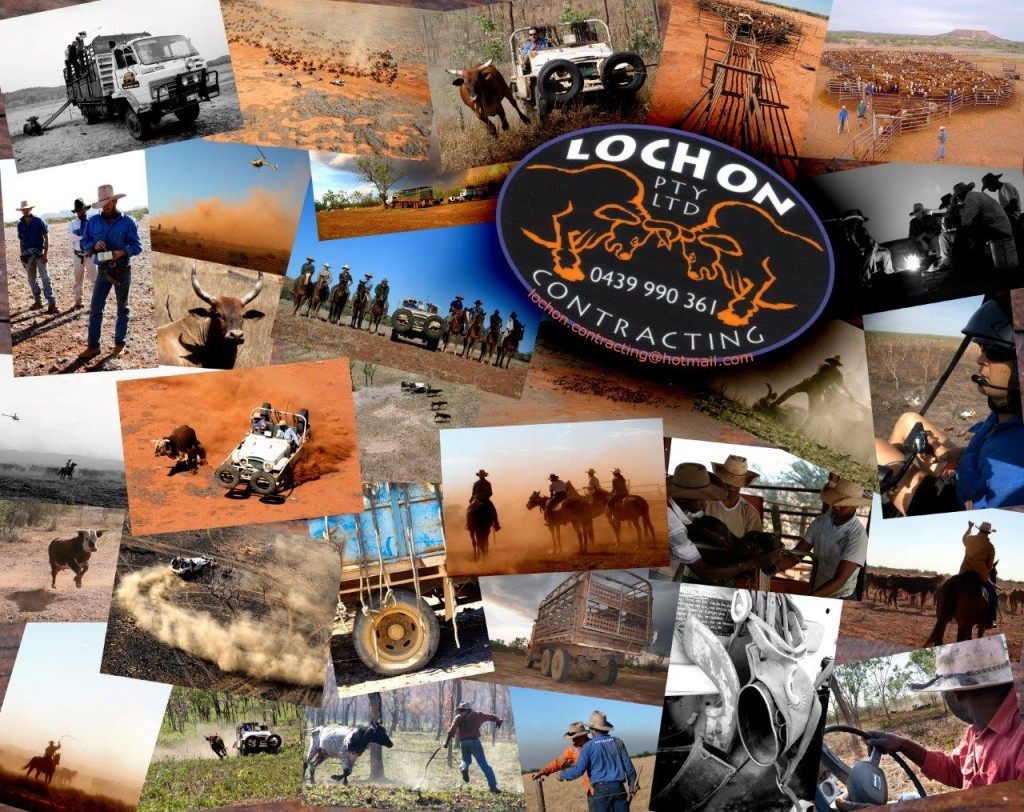 Lochon poster 2012