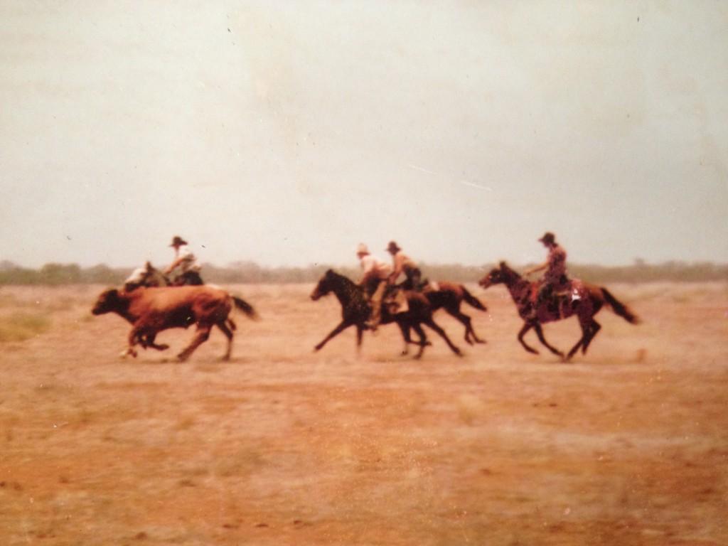 Bull vs Ringers