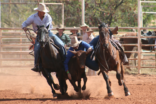 Locky Steer Wrestling at Derby Rodeo
