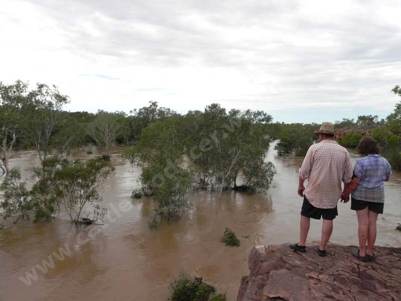 River Jan 2011