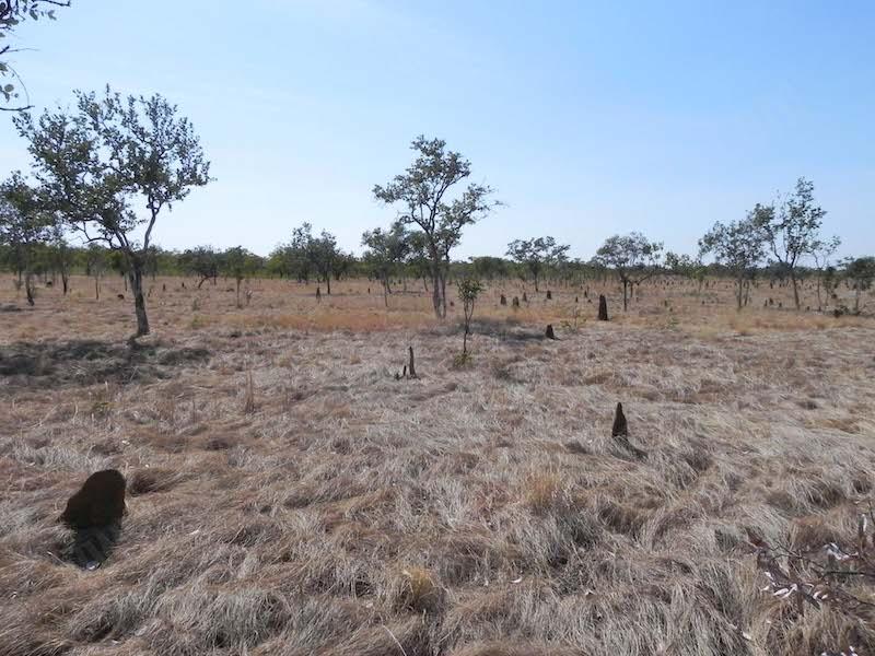 #2.4 Dry season