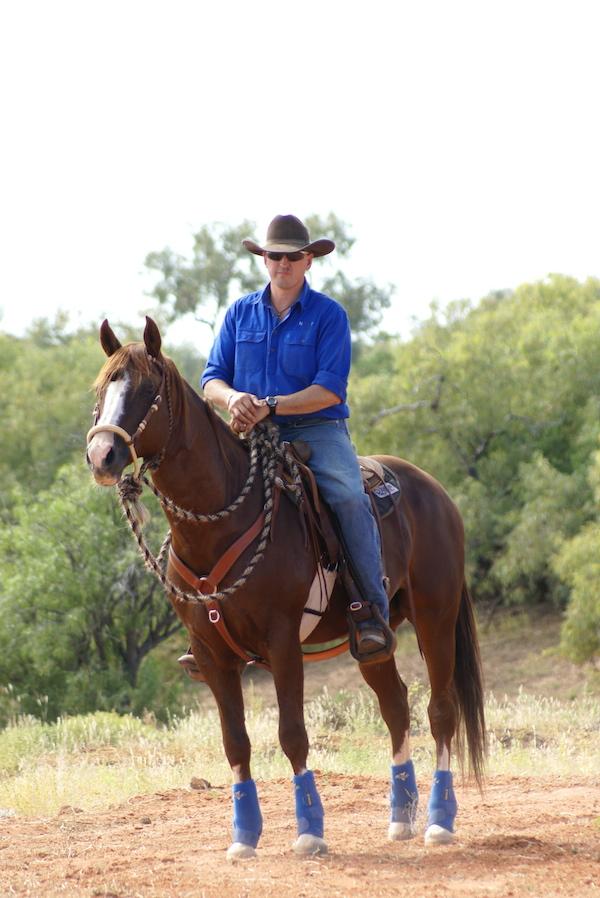 Horses for a cattleman