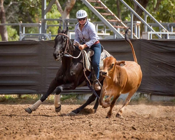 421Claudia Photo 1 campdrafting station horse Accelerate 2