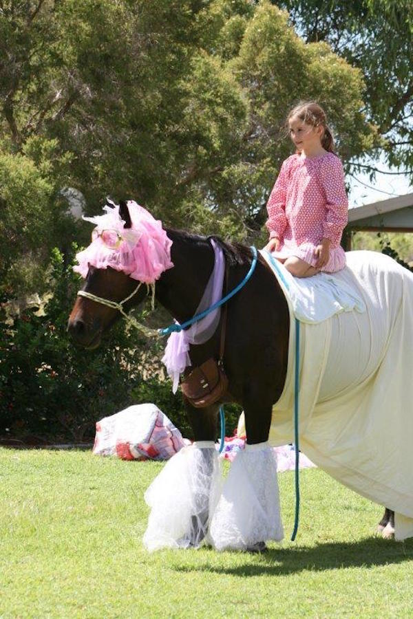 Blog 1 - Photo 8 Chloe playing dress ups with her horse Husky!!! 2