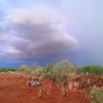 Coming home to Dampier Downs