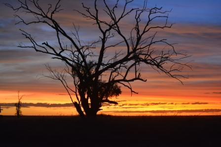 Barkly sunset
