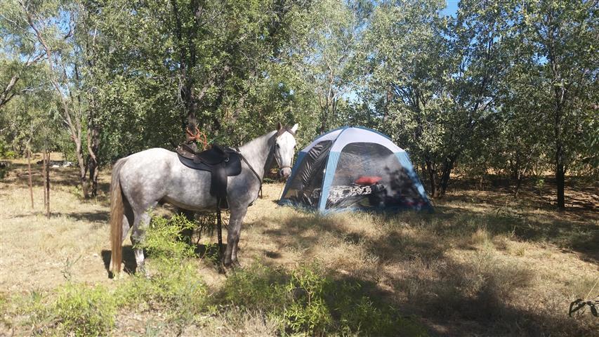 3.5 Linda's campsite (Small)