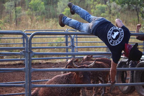 Salerno PAstoral 3 - Cowboy Jumping Fence copy