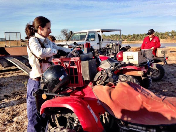 photo 3. Our team joined up with Barkly Landcare recently to conduct some pasture monitoring copy