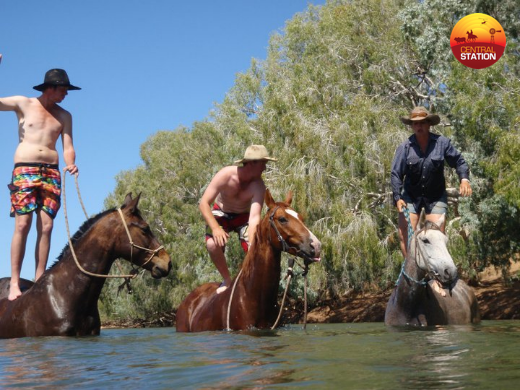 1-6-having-some-horse-fun-in-the-river-copy