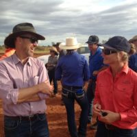 Inaugural conference for cattlemen in the north – biggest and best event so far