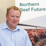 Backgrounding beef – an analyst's perspective