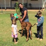 From Chasing Cows to Wrangling Kids