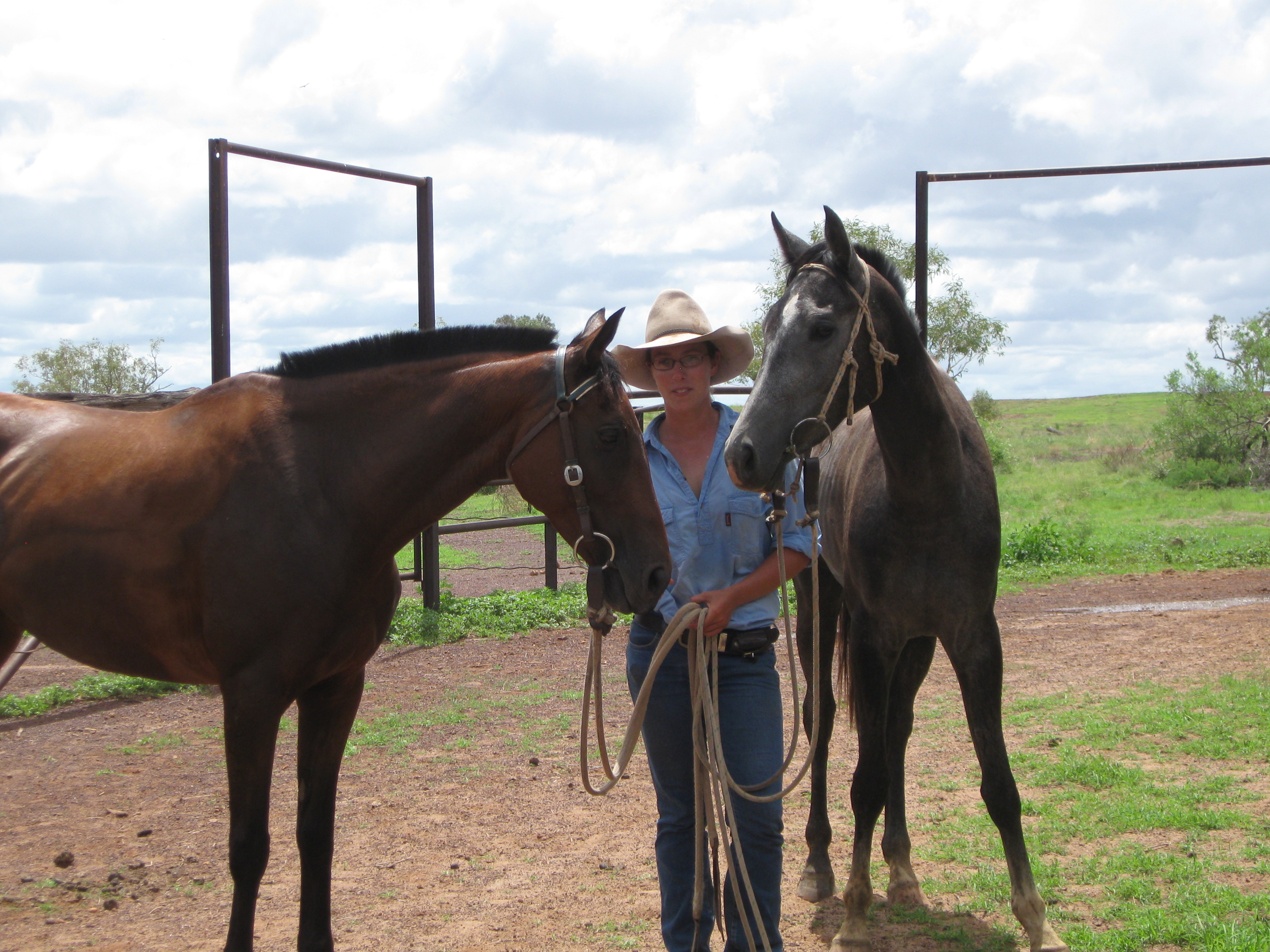 Horsemanship Linked Learning