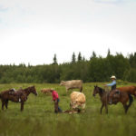 Community in the pasture
