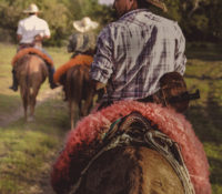 Mustering with Pantaneiros