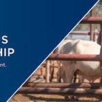 Announcement: Indigenous Traineeship Programme